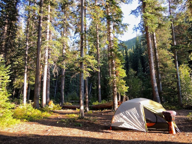 camping with friends essay How to take your friends camping without killing them how to organize the ultimate group camping trip how to take your friends camping without killing them.